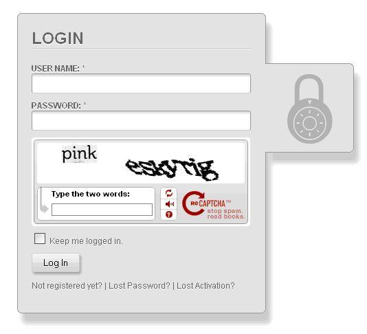 CSS Login